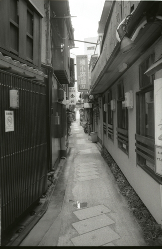 Nikon_BW134.jpg